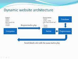 Website(Dynamic)
