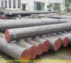 Industrial Steel Flanges for Petrochemical Industries
