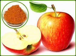 Apple Dry Extract