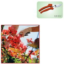 Hand Secateurs for Rose Garden