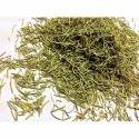 Dry Rosemary