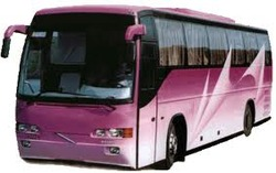 Daily Luxury Bus Services
