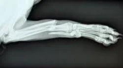 Pet X-Ray