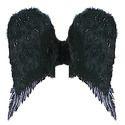 羽毛天使翼