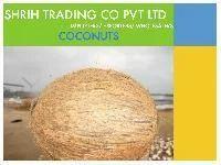 Coconut De-husked