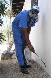 Monthly Residential Garden Pest Control Services in Delhi