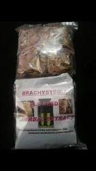 Brachystegia Seeds