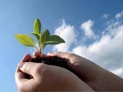 Why Bio Organic Fertilizers