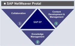 SAP Netweaver Portal