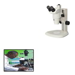 Stereo Dissecting Microscopes for Medical Institute