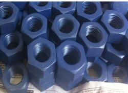 PTFE XYLAN Coating Services On Nut