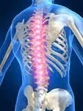 Spine Surgery Service