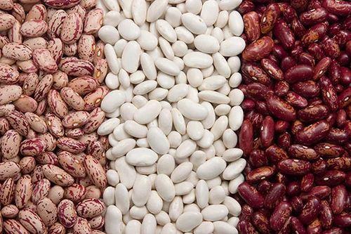 Garcinia cambogia precio bolivia