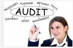 Human Resource Process Audit