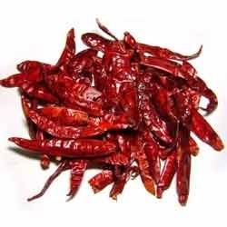 Super Quality Indian Dry Red Hot Chilli