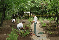 Gardening And Horticulture Services