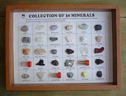 Collection of 30 Minerals in Wooden Polished Showcase