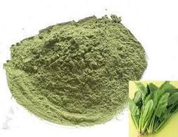 Spinach Vegetable Powder