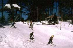 Winter Activity Packages