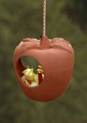 Hanging Apple Bird Feeder