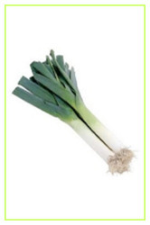 Leeks Fresh Vegetables
