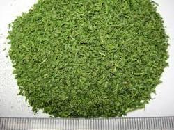 Parsley Leaves (Petroselinum Crispum)
