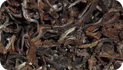 Darjeeling Oolong Classic Tea