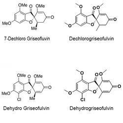 Griseofluvin Impurity