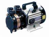 Aquamast Domestic Pump