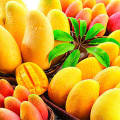 Fruits | Asianstar Exports And Imports | Exporter, Importer