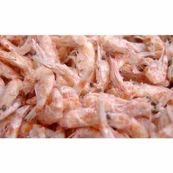 Antarctic Krill Meal