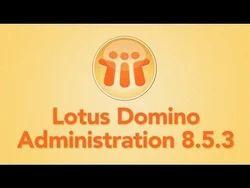 Lotus Domino IT Technology Courses