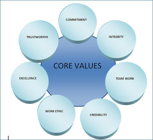 nursing core values essay