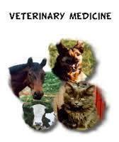 Veterinary Monopoly Franchise In Maharastra