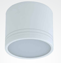 Ceiling Mounted Down Light