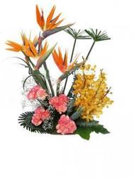 15 Executive Flowers(incl.bird Of Paradise & Carnations)