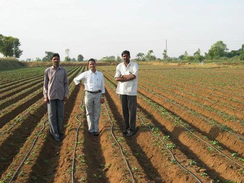 sistema di irrigazione a goccia