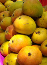Alphonso Mangoes in Bengaluru - Latest Price & Mandi Rates from