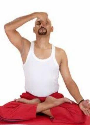 Power Yoga Classes Pranayama Service Provider From