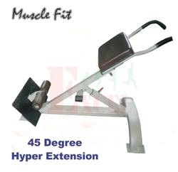 45 Degree Hyper Extension