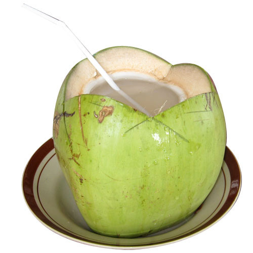 Coconut Water - Wholesaler & Wholesale Dealers in India