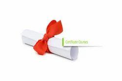 Training Cum Certificate Courses