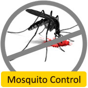 Mosquito & Flying Insect Control Service