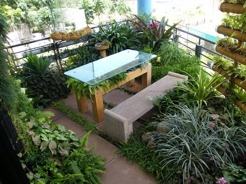 Intensive Green Roofs Services Roof Gardening Services