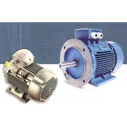 Rotomotive Industrial Ac Motors, IP Rating: IP55, Voltage: 220v - 415v