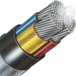 XLPE Insulated LT Power Cables
