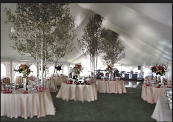 Conferences Catering Services