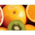 Natural Food & Beverage Ingredients Extracts