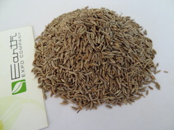 Sortex Cumin Seeds