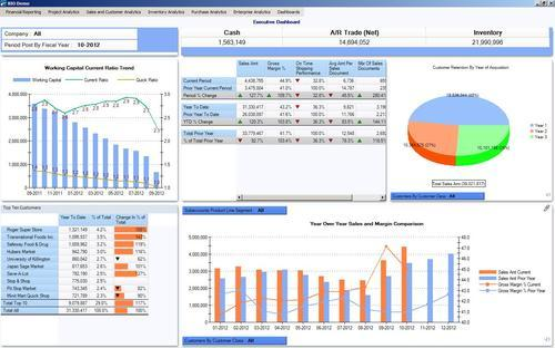 CEO Dashboard Software